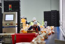 Packing Labour jobs in Australia